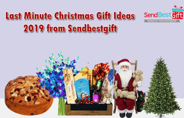 Last Minute Christmas Gift Ideas 2019