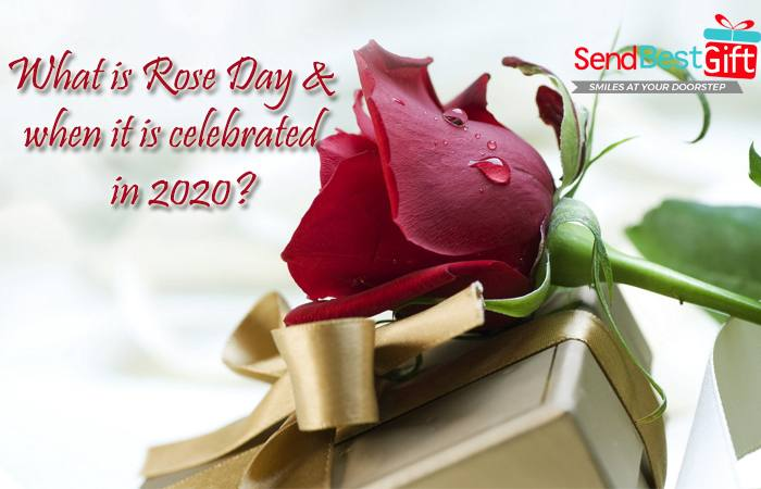 What is Rose Day & when it is celebrated in 2020