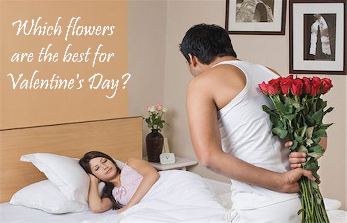 Which flowers are the best for Valentines Day