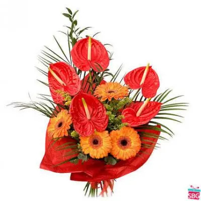 Anthurium & Gerbera Bouquet