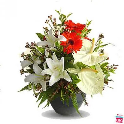Anthurium Gerbera & Lily Arrangement