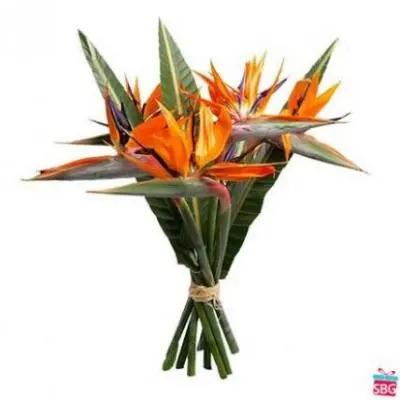 Birds Of Paradise Bouquet