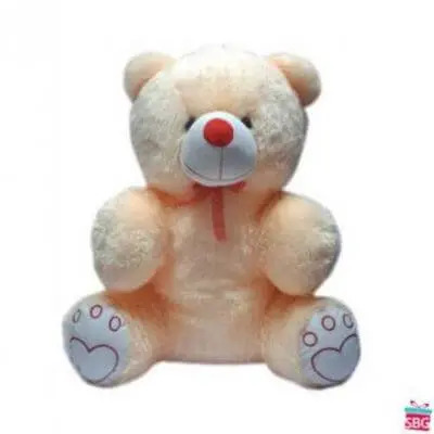 20 Inch Teddy Bear