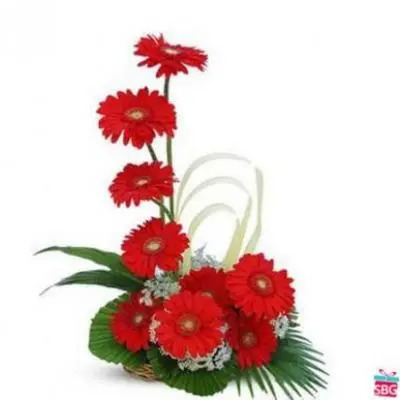 Red Gerbera Basket