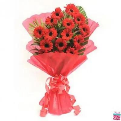 Red Gerbera Bouquet