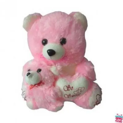Baby With Mom 15 Inch Teddy