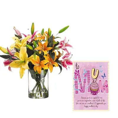 Mixed Lily Vase with Mothers Day Card