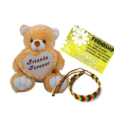 Best Friend Teddy Combo
