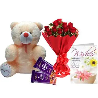 20 Inch Teddy with Bouquet, Silk & Card