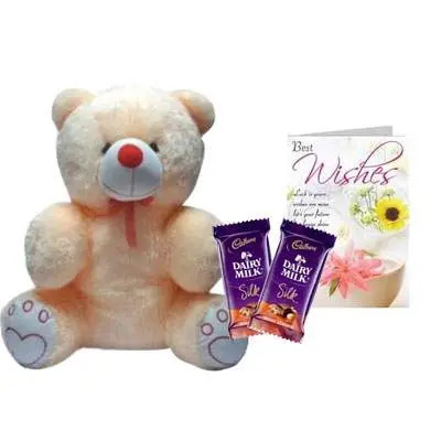20 Inch Teddy with Silk & Card