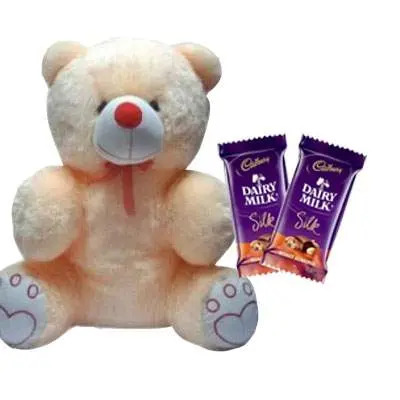 20 Inch Teddy with Silk