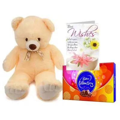 24 Inch Teddy with Celebration & Card