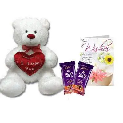 30 Inch Teddy with Silk & Card