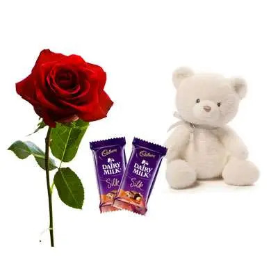 Rose with Silk & Teddy