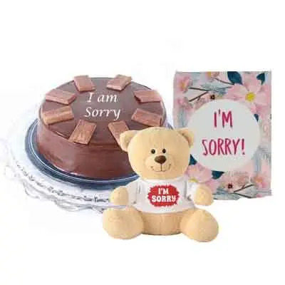 I M Sorry Chocolate Cake With Teddy & Card
