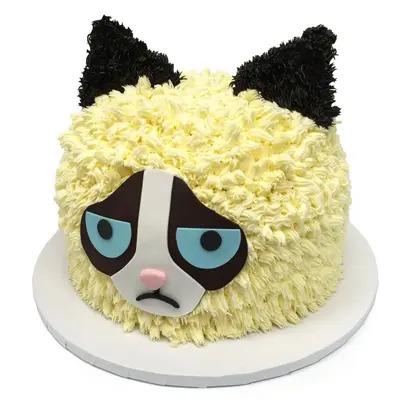 Grumpy Cat Cake