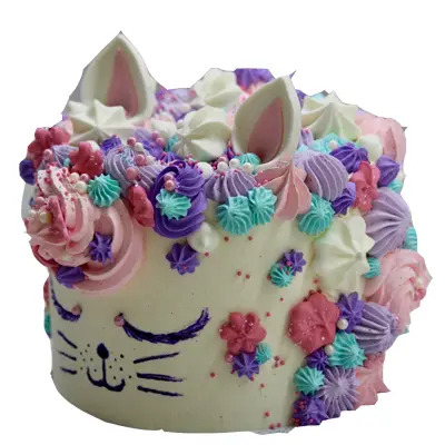 Vanilla Cat Theme Cake