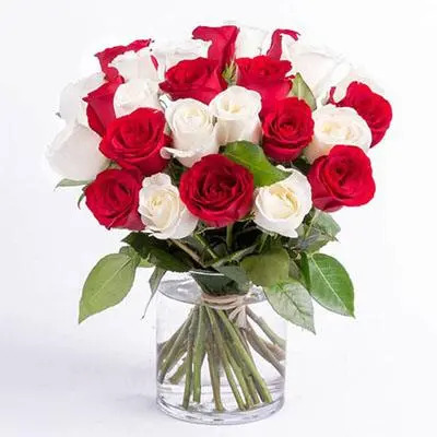 Red and White Roses Big Vase