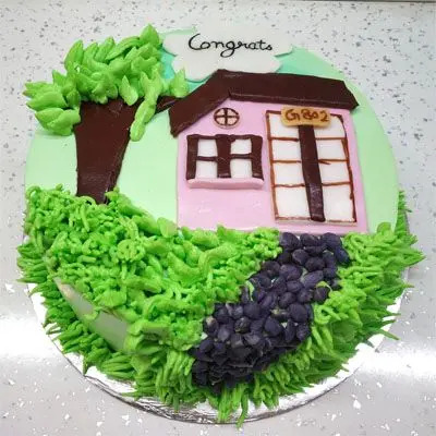 Housewarming Party Cake