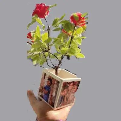 Personalized Plant Pot