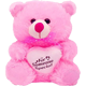 Valentines Day Teddy